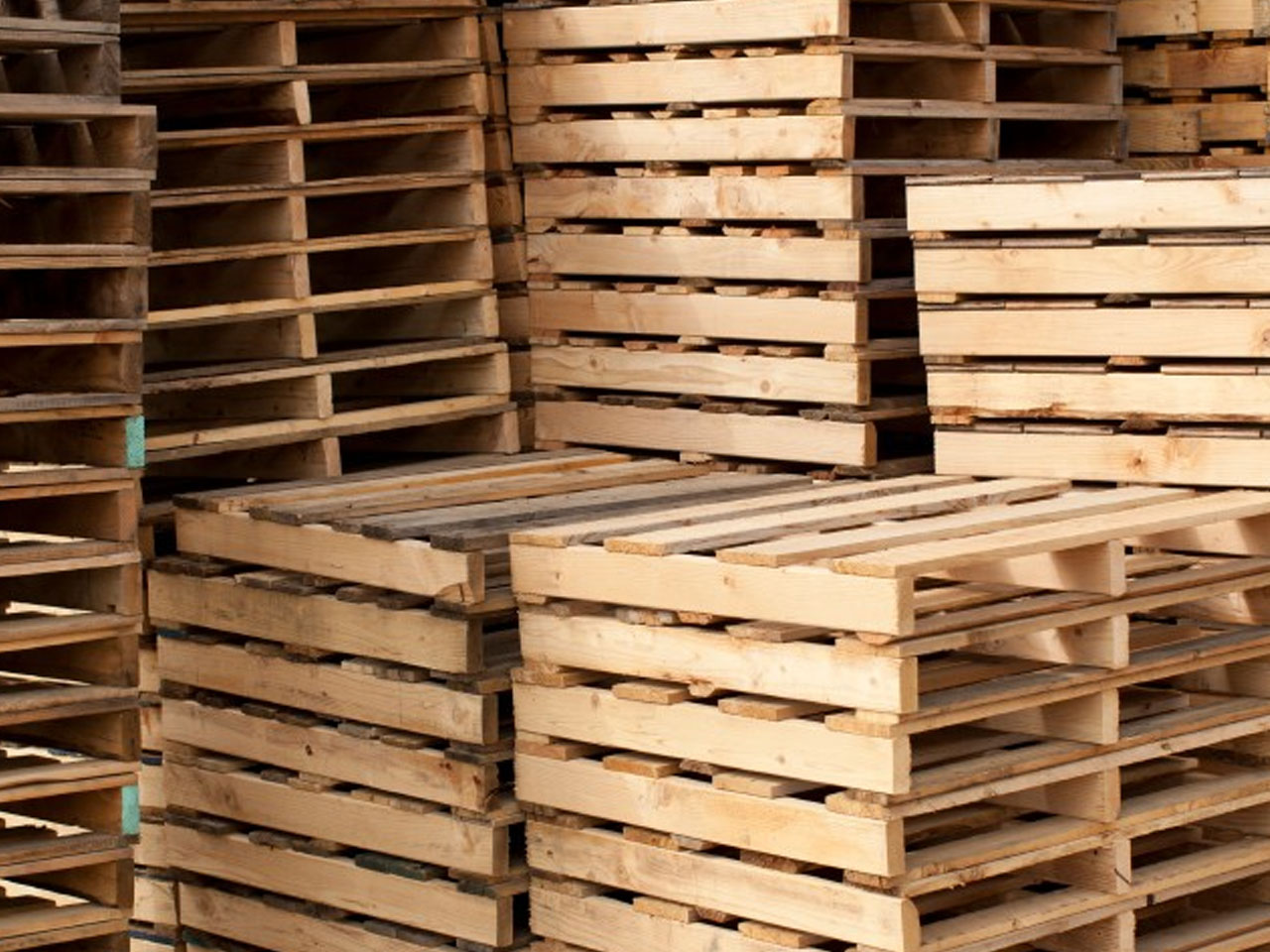5 Areas of Pallet Handling Equipment